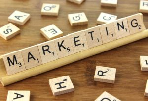 secteur du marketing
